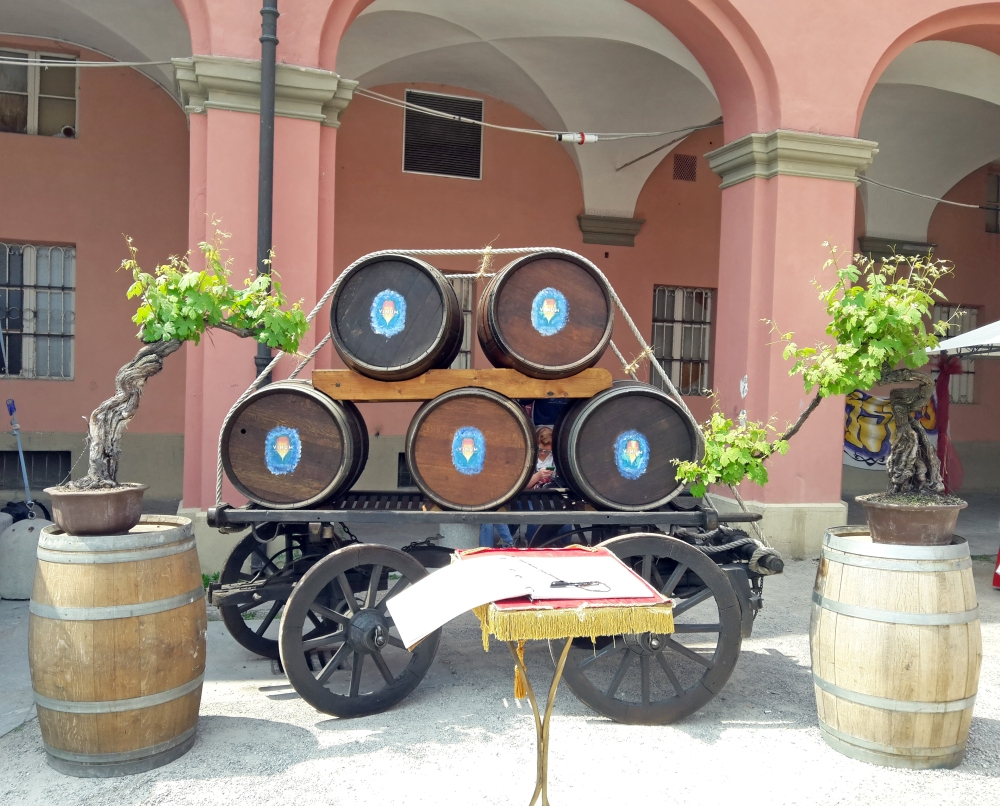 Botti di Vino Alba Langhe Piemonte