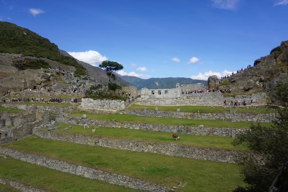 archeologia-architettura inca-Machu Picchu-civiltà inca-la città perduta degli inca-Perù-Sud America-Viaggio