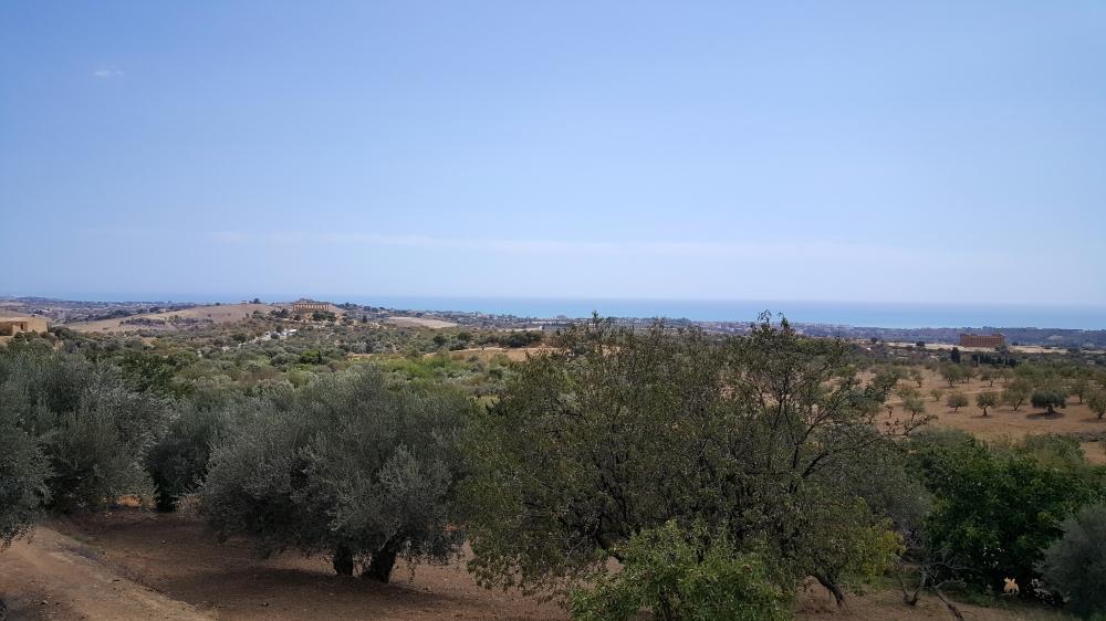 Strada Panoramica-Valle dei Templi-Agrigento-Sicilia-Italia