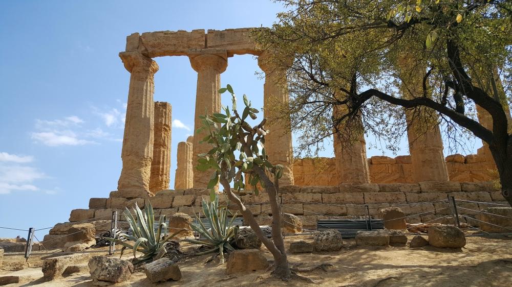Tempio di Giunone-colonne-Valle dei Templi-Agrigento-Sicilia