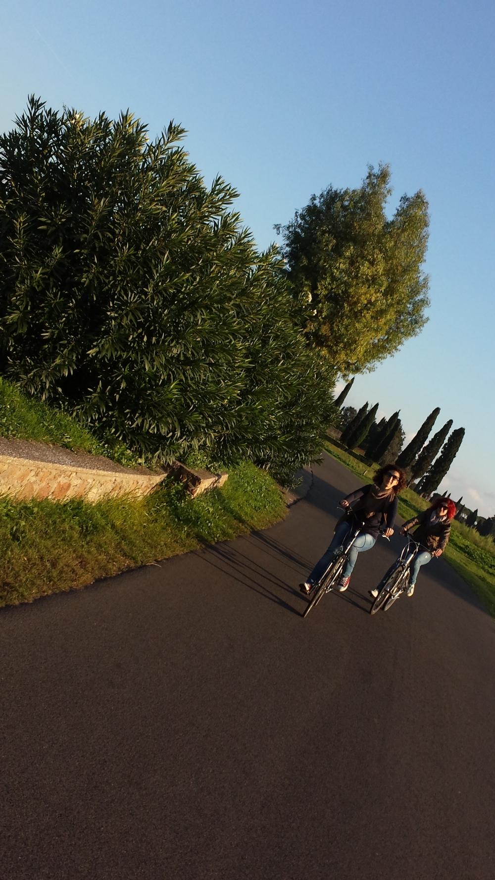 Biciclette-Parco dell'Appia Antica-Roma-Italia