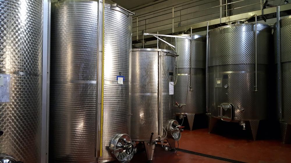 Botti-Vino-Azienda vitivinicola-Cà Neuva-Dogliani-Cuneo