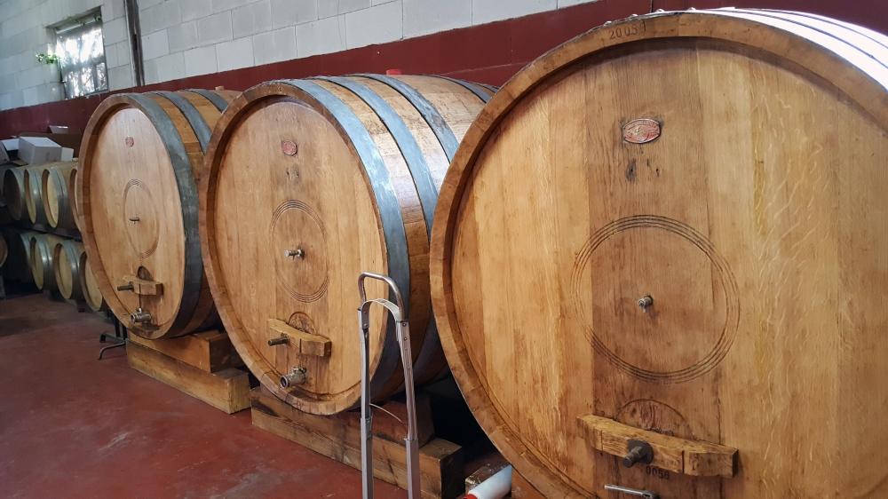 Botti-Vini-Invecchiamento vino-Cantina-Langhe-Piemonte
