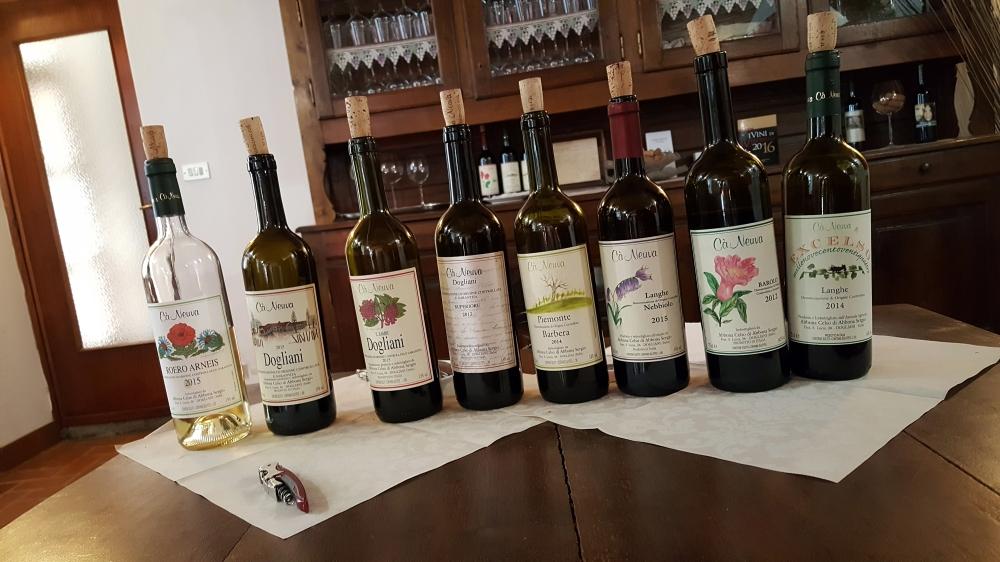 Vini-Dogliani-Cantina Cà Neuva-Barbera-Barolo-Nebbiolo-Langhe