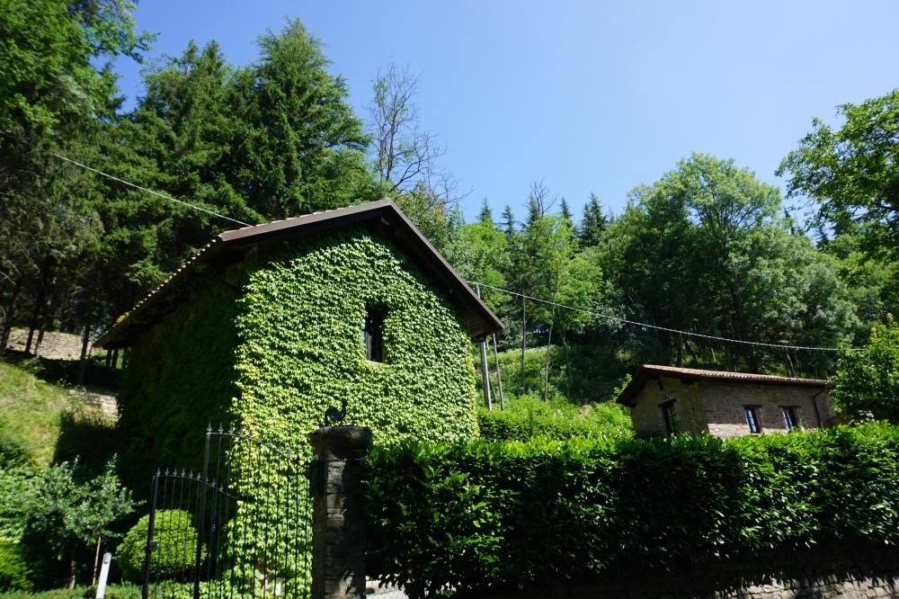 Senza Frontiere-Inaugurazione Mostra-Arte contemporanea-parco Quarelli-Alessandro Demma-Roccaverano-Asti-Piemonte-Blog-Blogger-Cultura