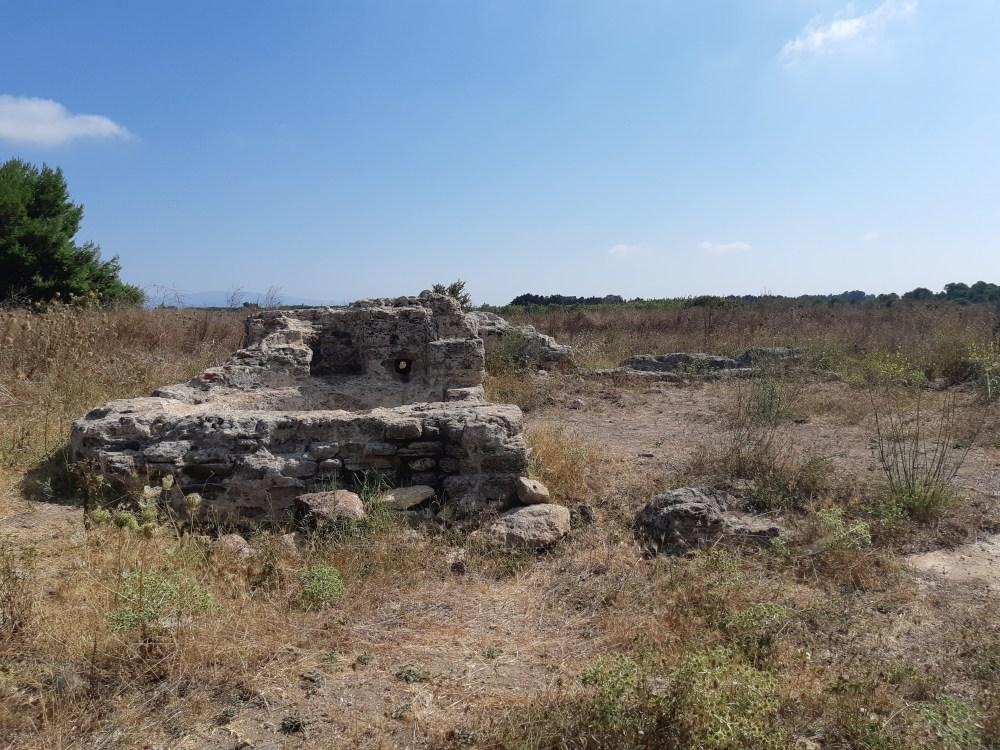 San Salvatore Cabras-Oristano-Cabras-Costa ovest sardegna-Viaggio in Sardegna-Archeologia Sardegna-Storia Sardegna-Cultura Sardegna-Blog viaggi-Blog cultura-Torino